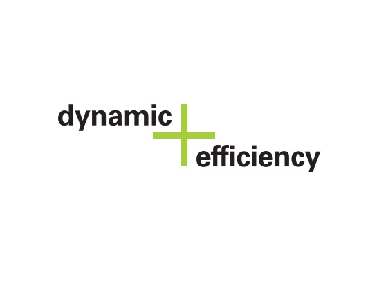 Image de l'option dynamic Efficiency