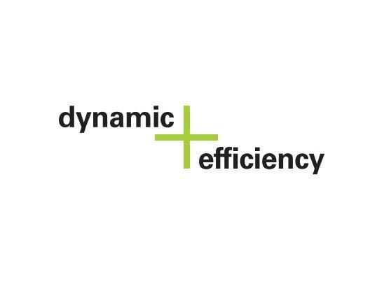 Image de l'option dynamic Efficiency